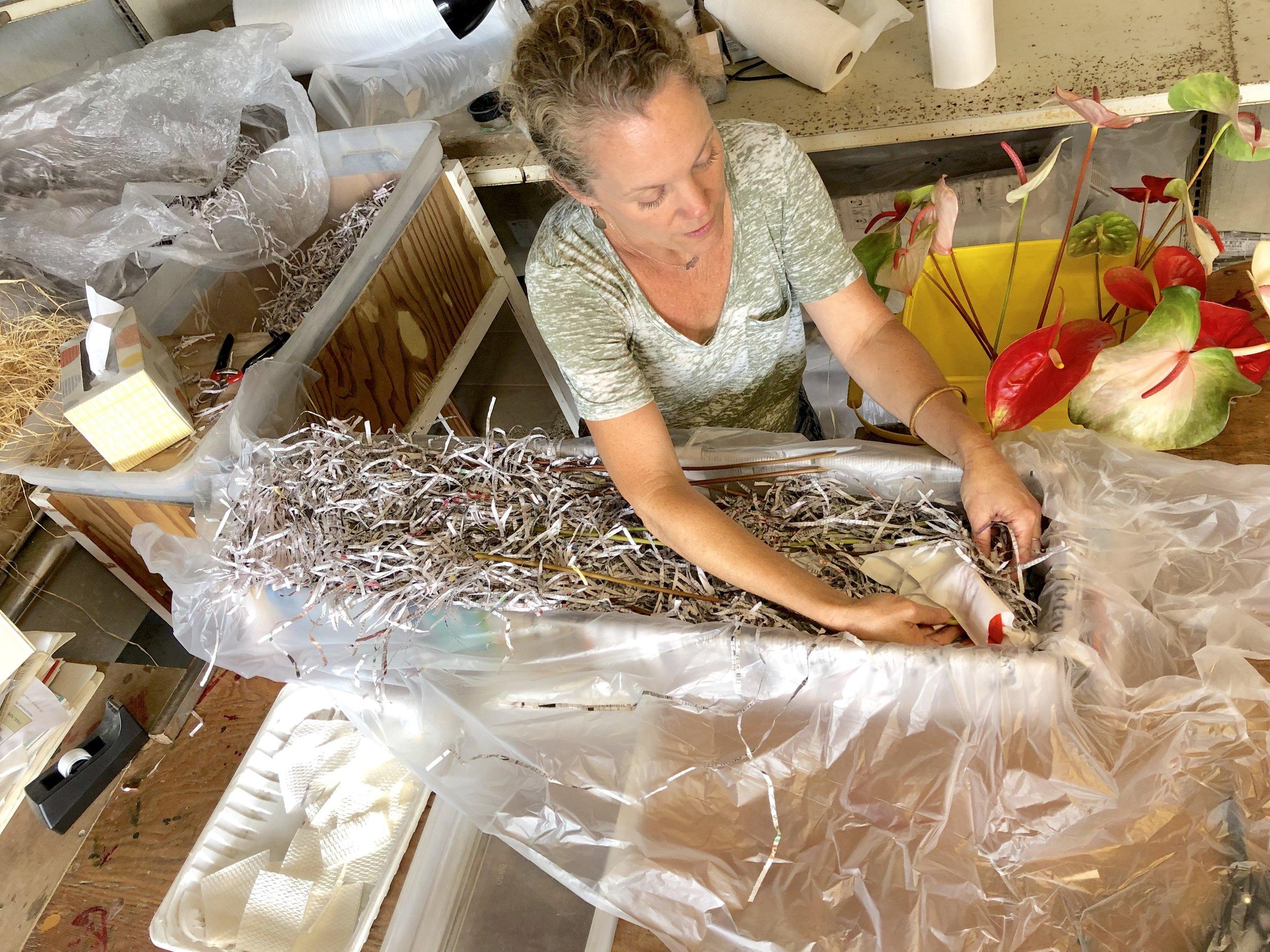 Anthurium packing.jpg