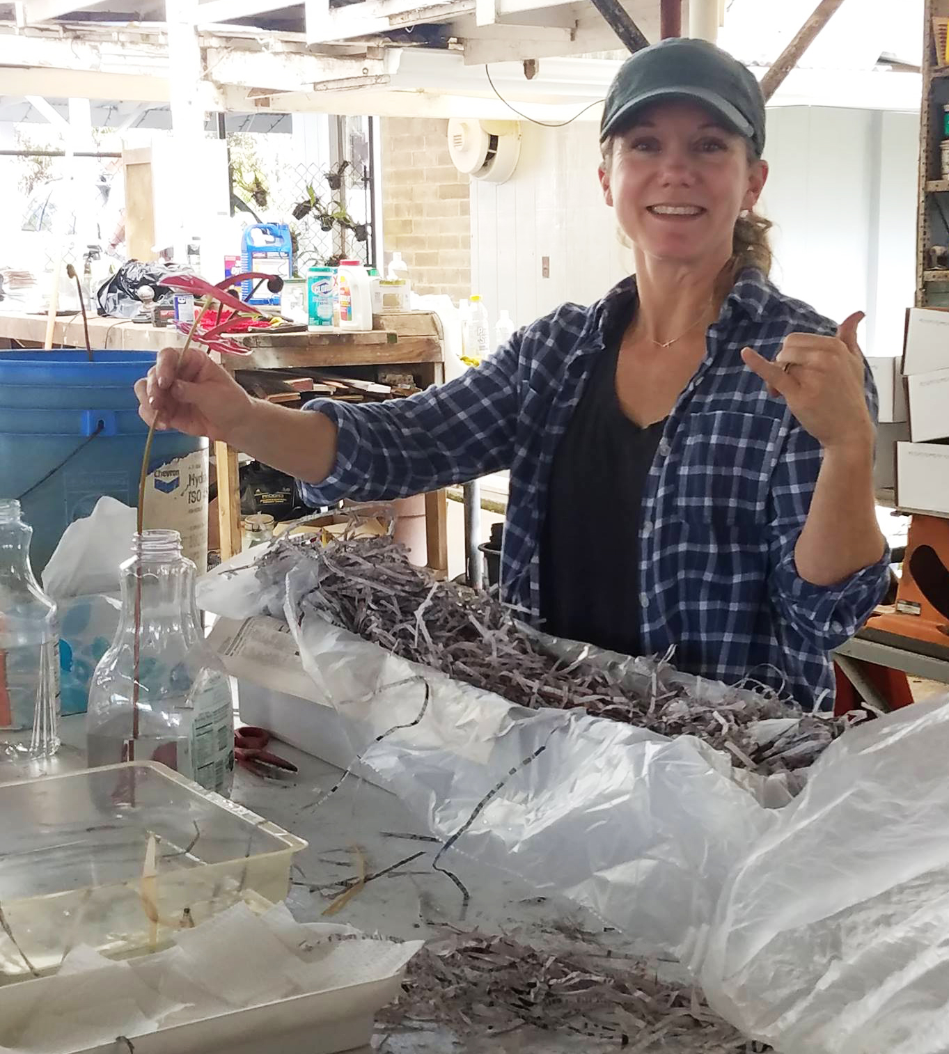 Heather carefully wrapping and packing each anthurium for shipment.