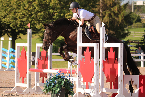 """Glennview Brandy Nicholas aka """"Griffin"""" / """"Beeb"""" . Griffin is a First Level Dressage Champion and a competitive (top 10) Hunter on the Ottawa area circuit. Photo: Mikayla Reis, Sunkist Media"""