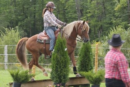 Norchesnes Fellow Paygaze . Owned and ridden by Brigitte Boisvert. From Quebec, Paygaze is a repeat competitor at the World Championships of Extreme Cowboy Racing in Texas