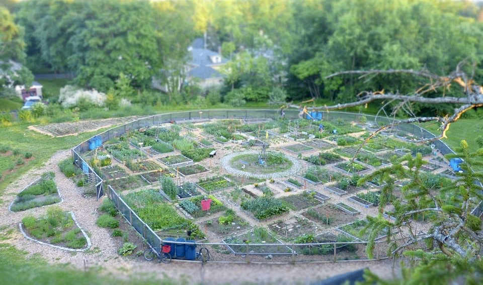 Brentwood Farms Community Garden - At the end of Brentwood, nestled up against Evergreen Cemetery. A magical place…