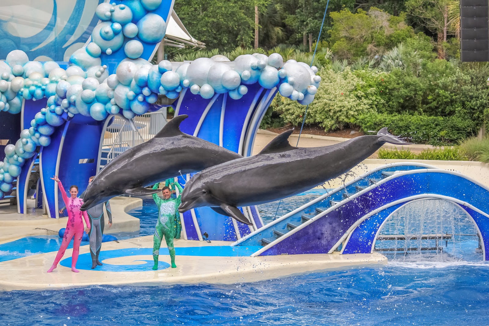 seaworld-header.jpg