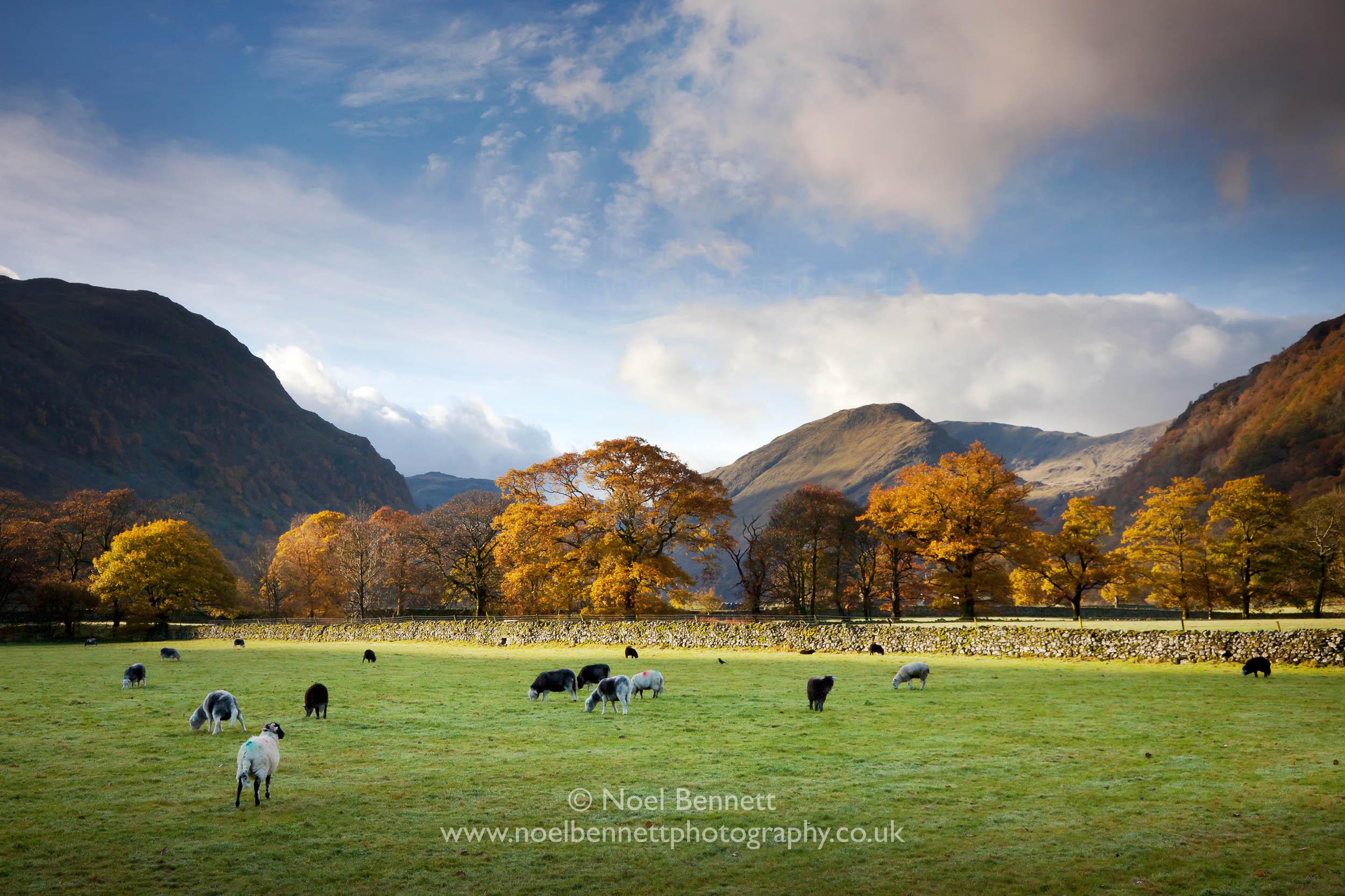 Autumn In Borrowdale