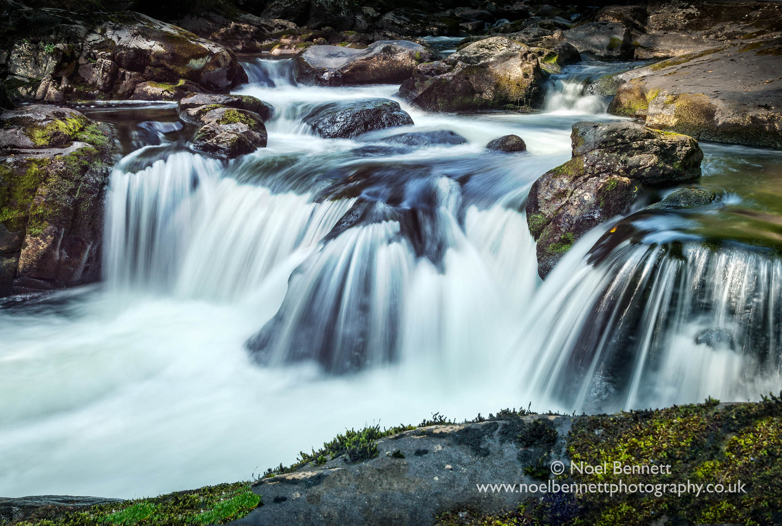Water's Flow