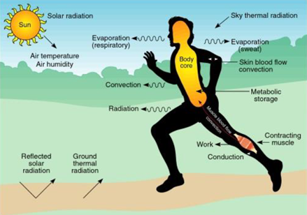 klimaatkamer graphic.png