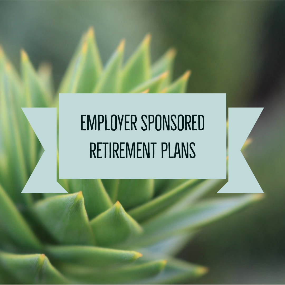 Employer Sponsored Retirement Plans.png