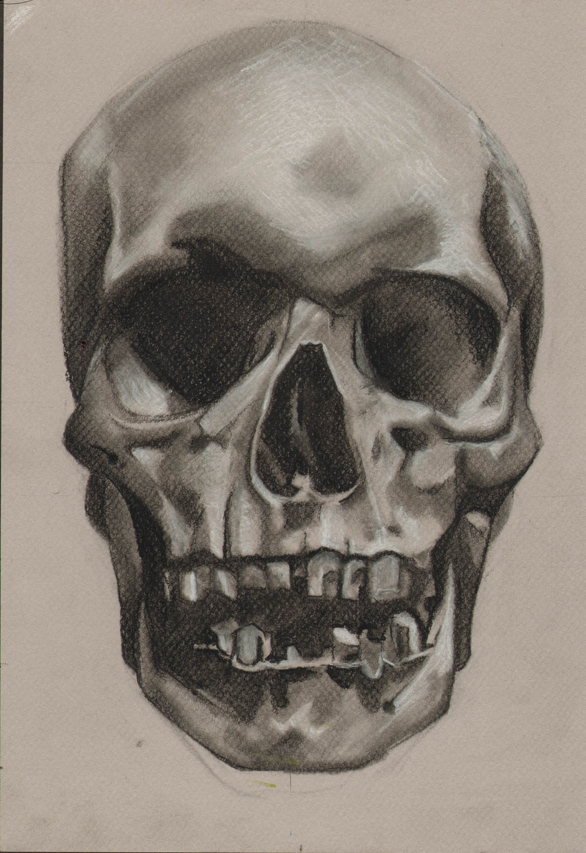 skull-drawing-med.jpg