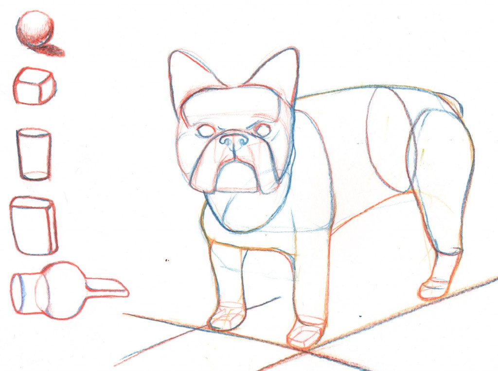 french-bulldog-drawing-1024x763.jpg