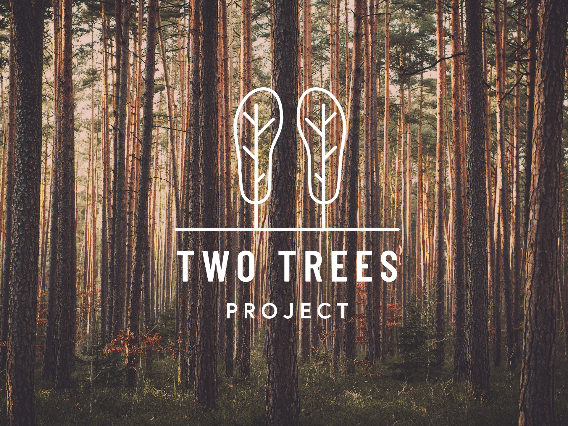 Our Footprint - For every pair of Hatty's we sell, we will plant one tree. One pair, two trees, soon a hatty forest.