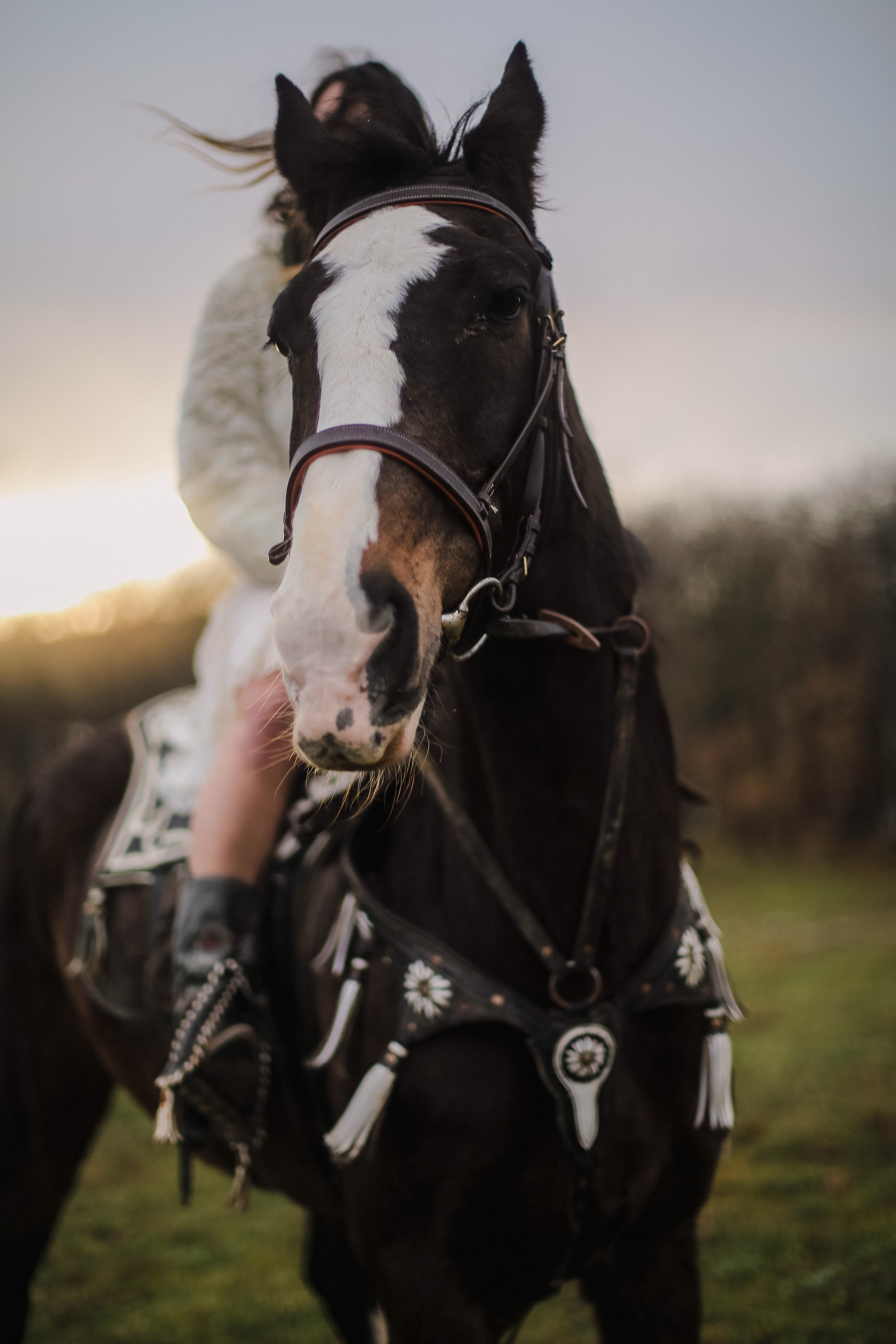 Horseback Riding - Take scenic rides in the High Country through sage meadows, aspen glens and evergreen forests. Mt. Princeton Riding Stables provides a fantastic riding experience. It's also a great way to see the fall colors.
