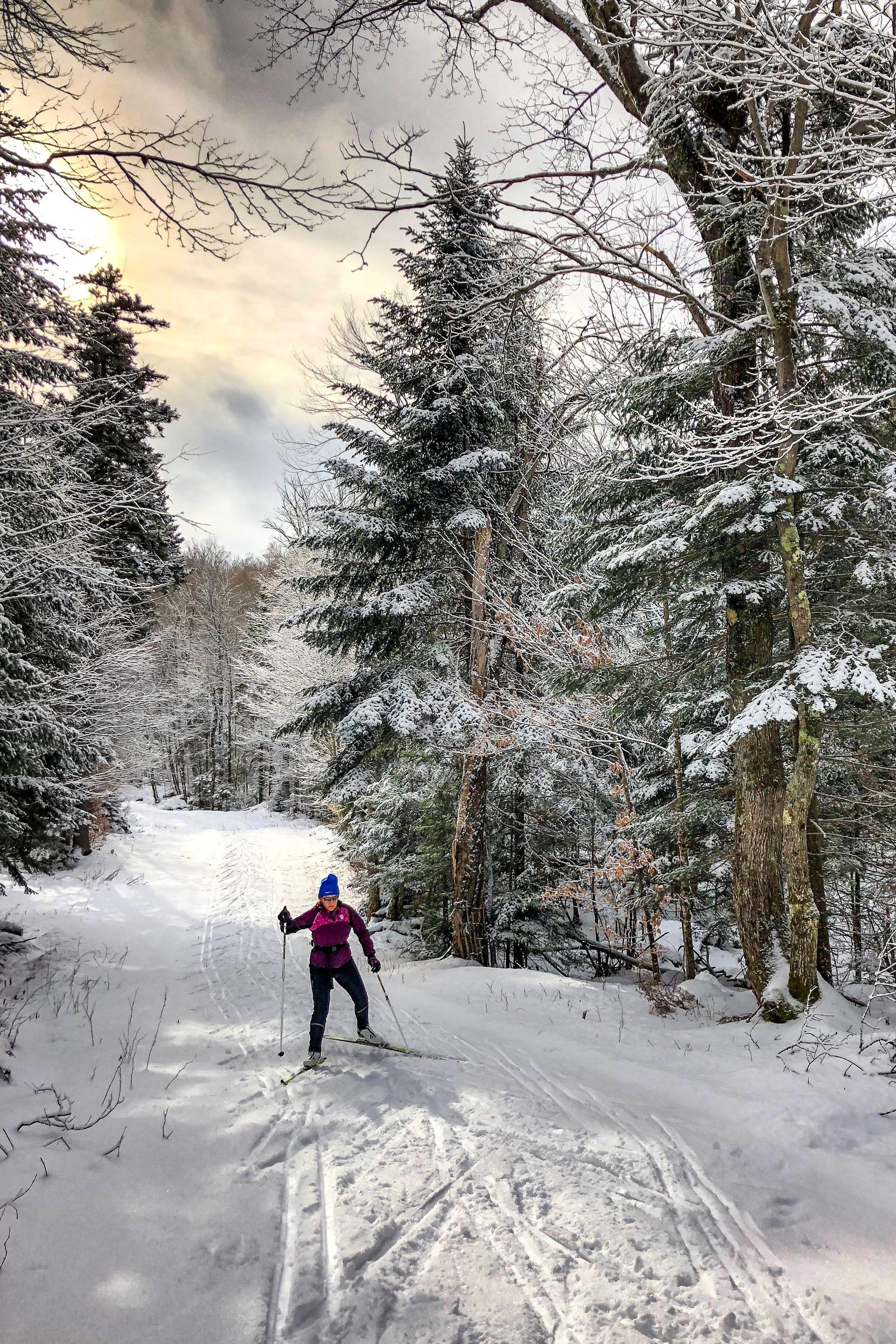 cross country skiing - Explore some of the most gorgeous scenery on cross-country skis in Chaffee County. Just 25 minutes west from Loyal Duke Lodge, cross-country ski and snowshoe over Old Monarch Pass, Co. After a gradual slope, stand on top of the Continental Divide and look into the Gunnison Valley. Stunning!