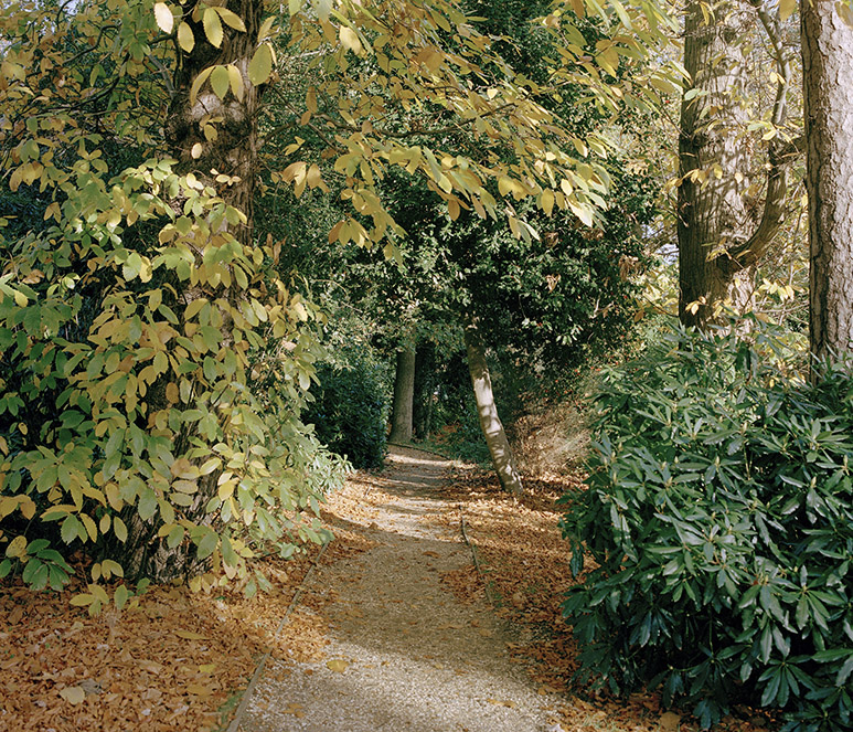 Footpath, Former RAF Bracknell. September 2017