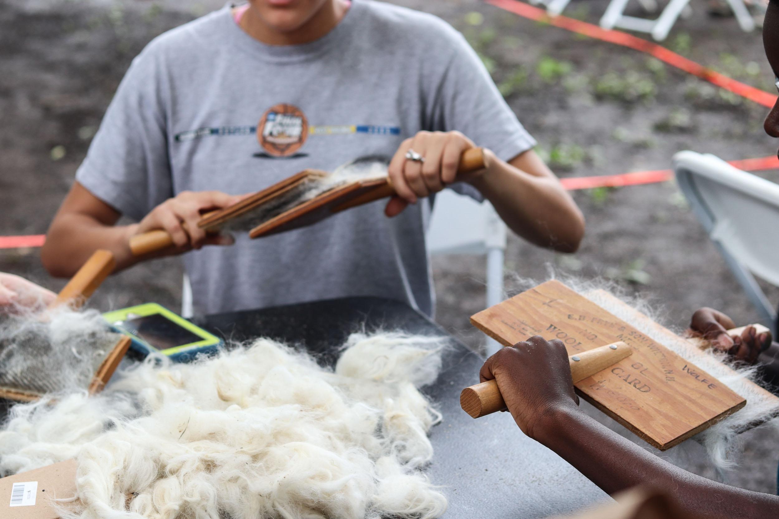 carding alpaca wool
