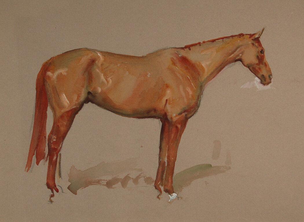 M Lyne #11 Chestnut Horse.jpg