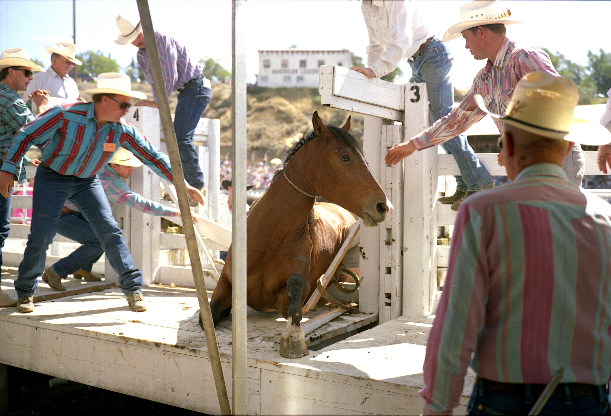 rodeo 92-50.jpg