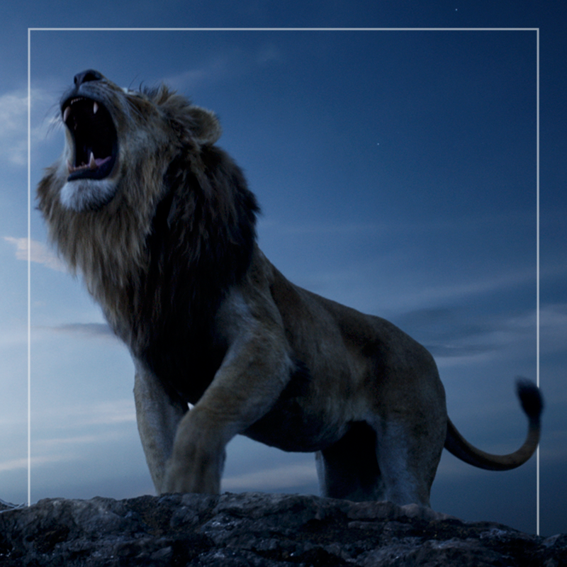 the lion king  out of home
