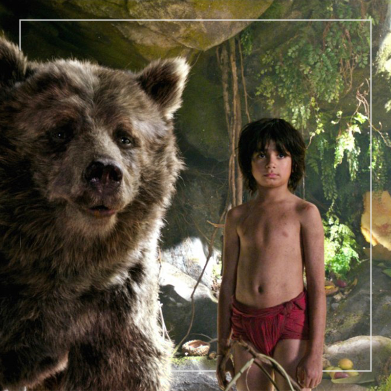 the jungle book  out of home+av