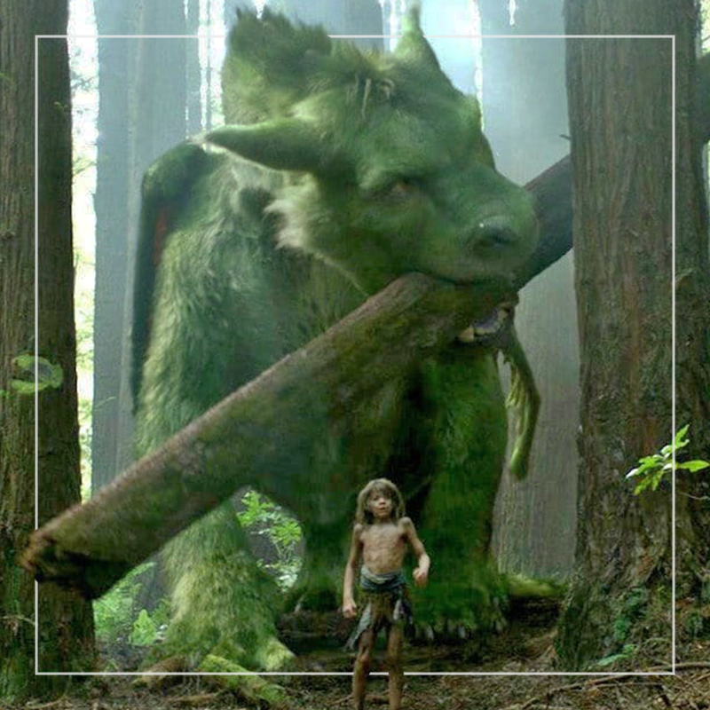 pete's dragon  out of home+av