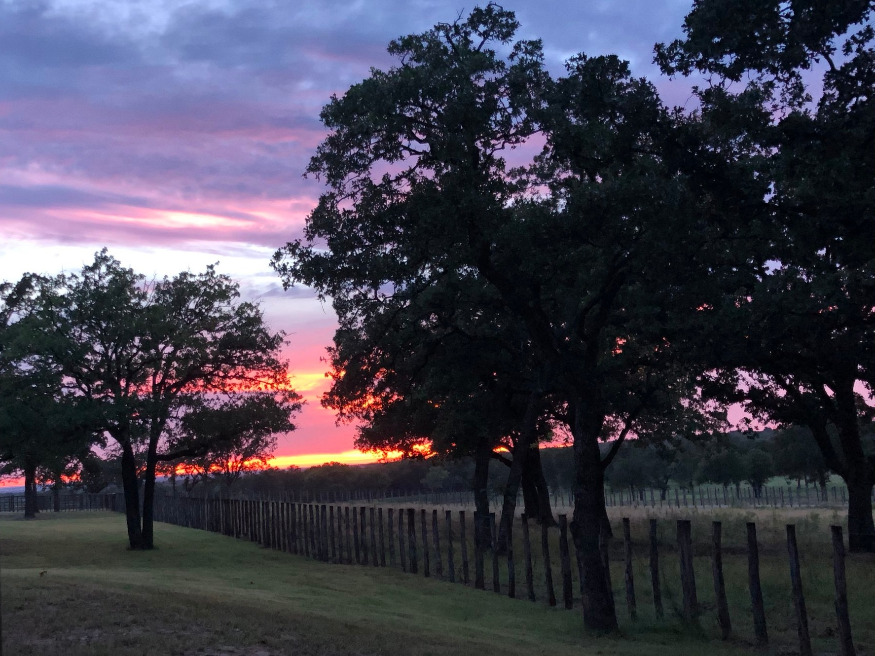 Sunset over a pasture in Weatherford, TX.