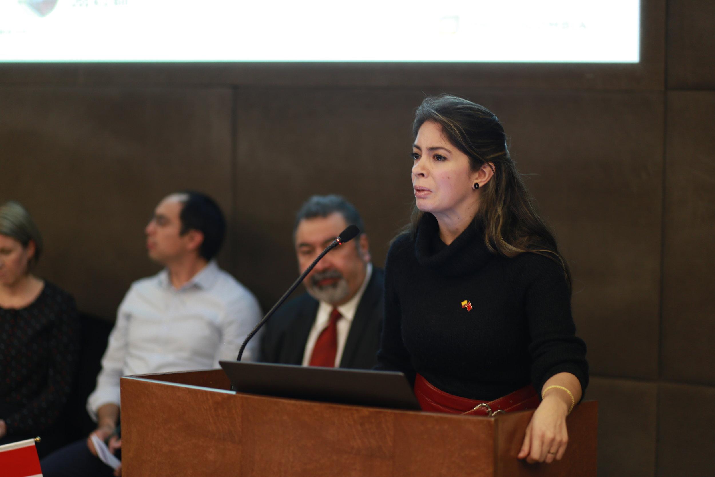Camila Hormaza del Consulado colombiano presentando en el Global Local Leadership Forum 2018