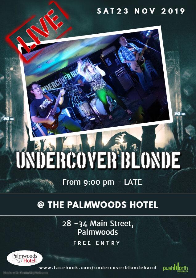 Palmwoods Hotel UCB Poster.jpg