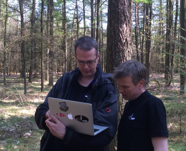 Testing connectivity in the forest