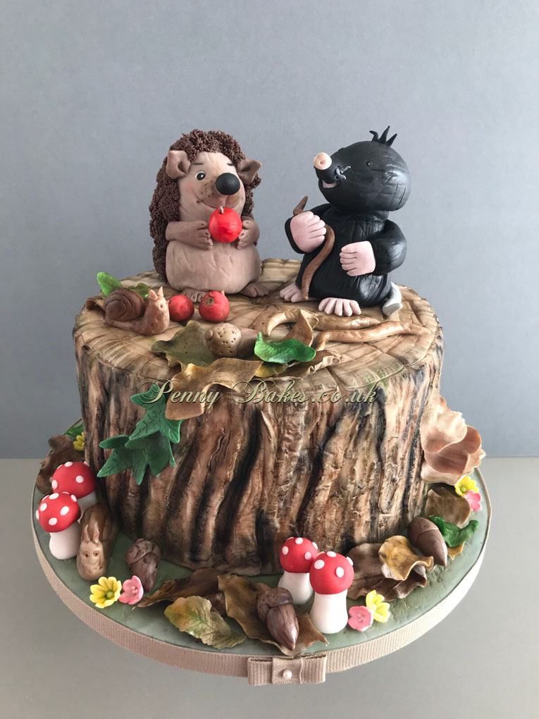 Penny_Bakes_Somerset_Cakes_Children's_Birthday_03.jpg