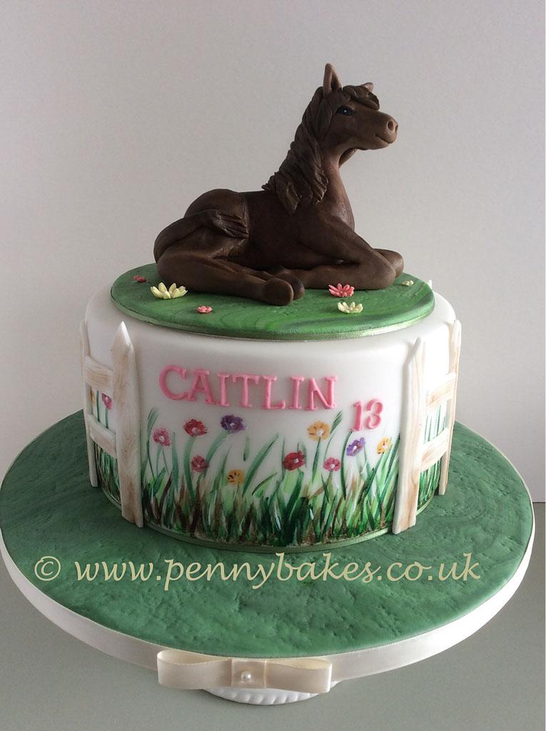 Penny_Bakes_Somerset_Cakes_Children's_Birthday_15.jpg