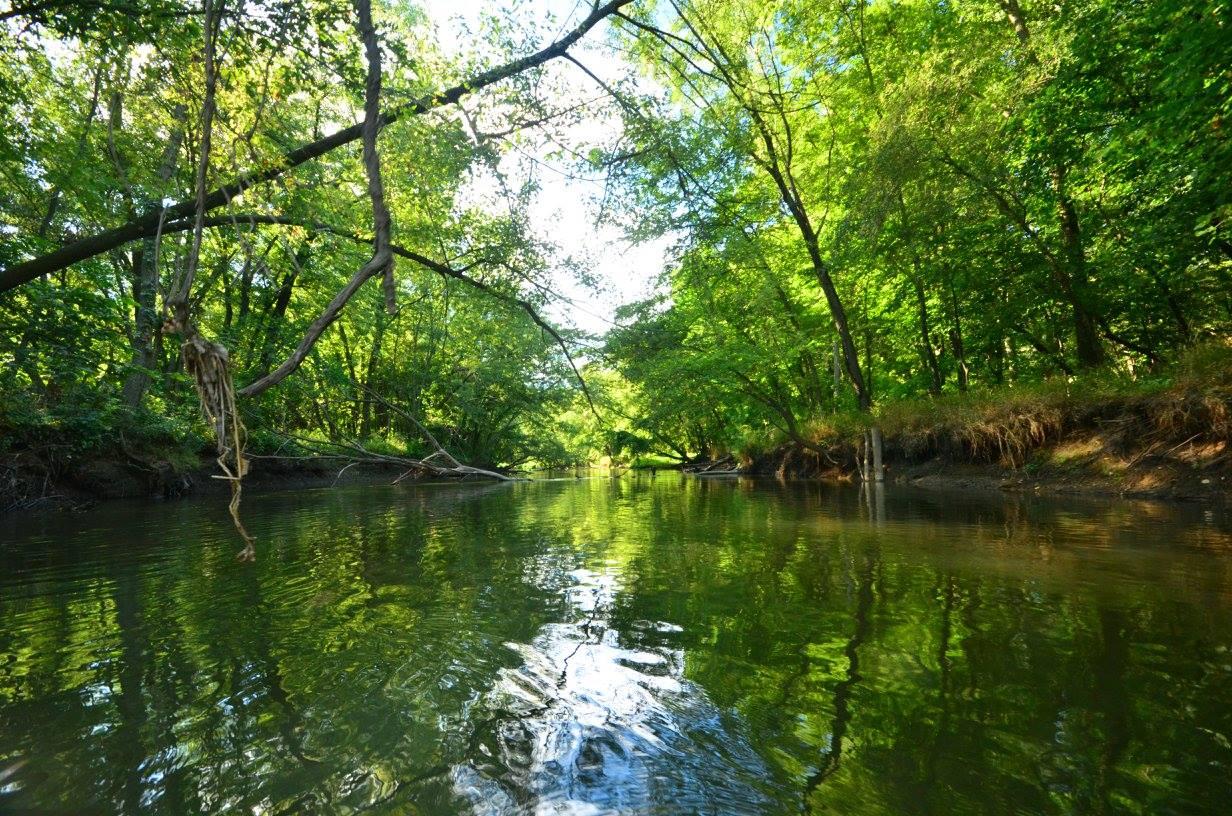River Photo 1.jpg