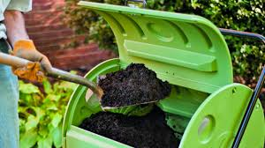 Start a compost. Here's how:  https://www.wikihow.com/Compost