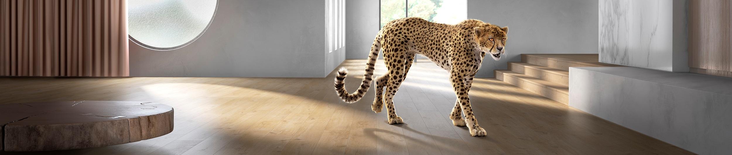 Walking_decor_cheetah_moved_2500px.jpg