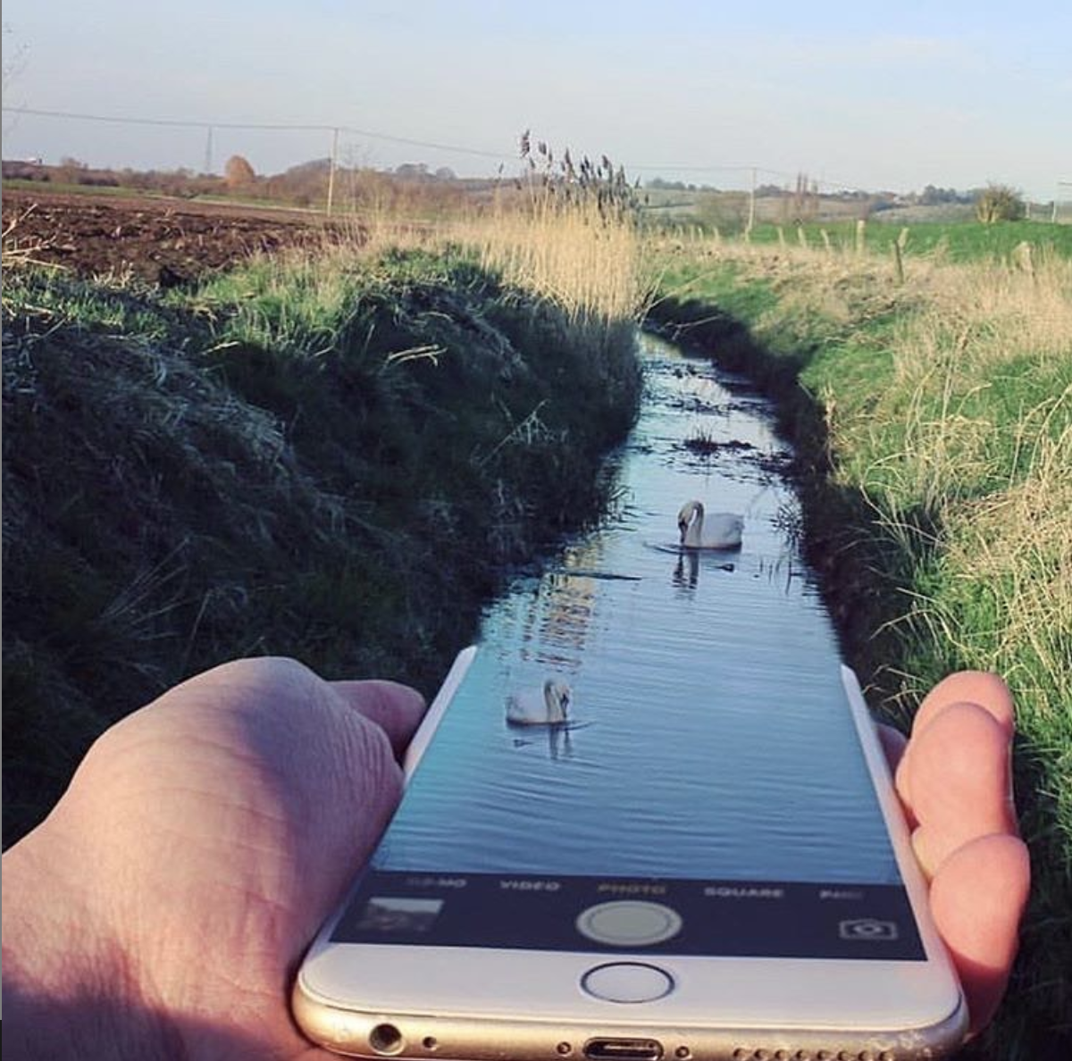 grow Your tribe phone water