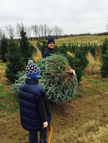 Christmas Tradition.jpg