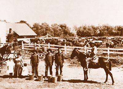 Ranch Life for Alamo.jpg