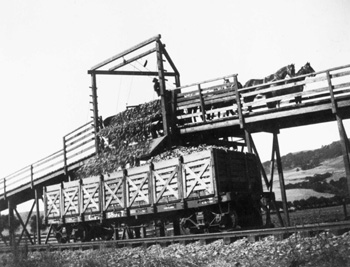 Railroad stock yard.jpg