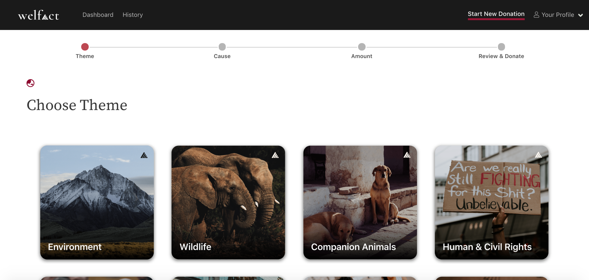 Welfact Marketing Website - Platform Progress