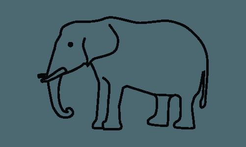 Welfact Donation Platform - Wildlife
