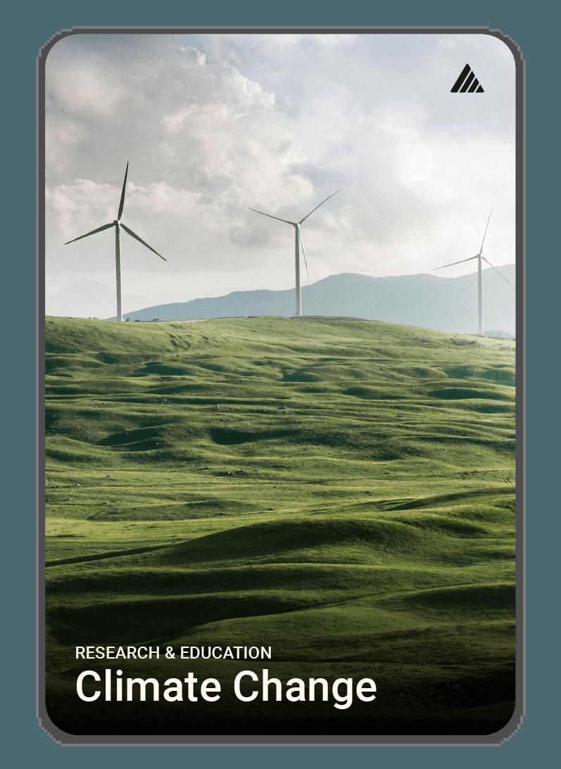 Welfact Donation Platform - Environment