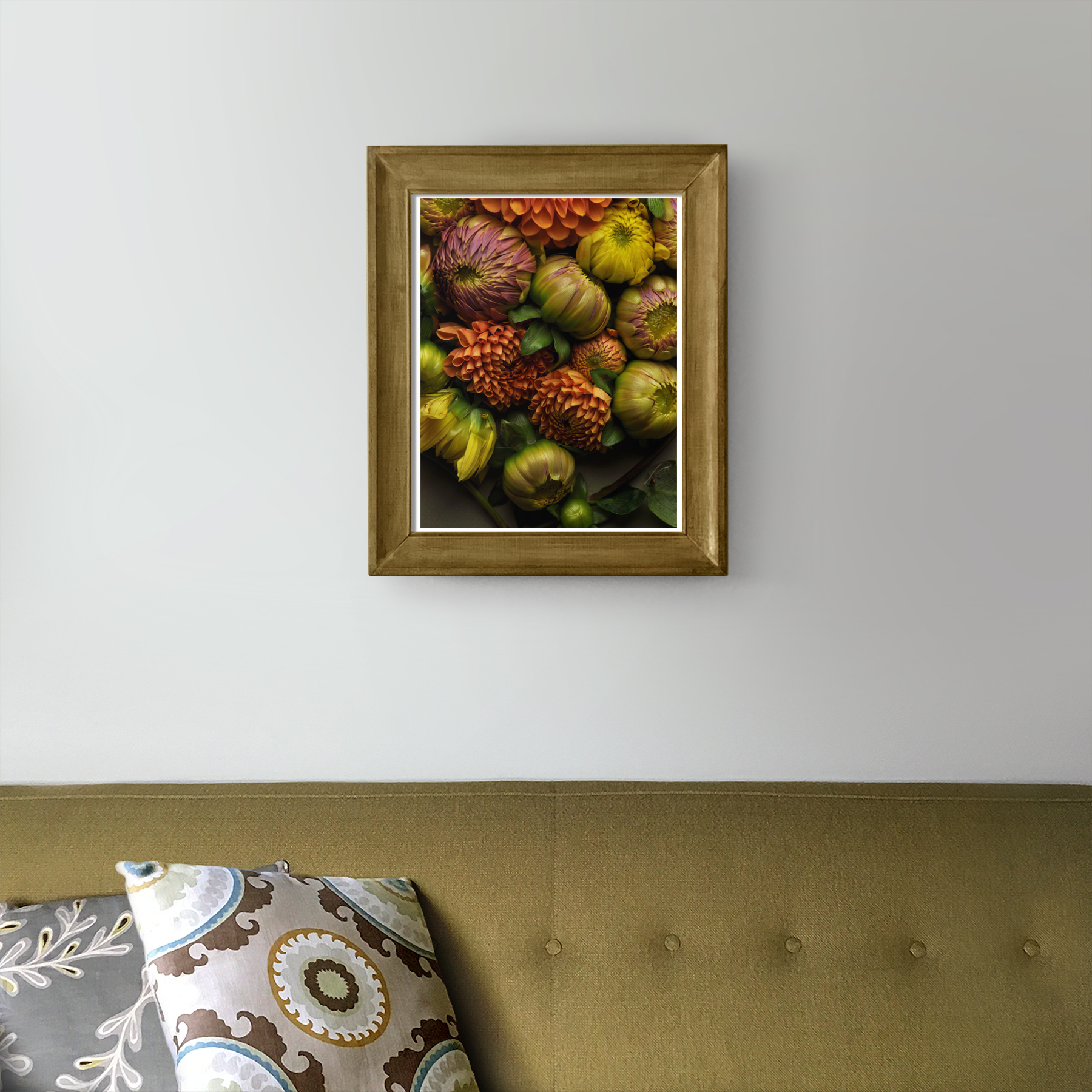 Dahlia Buds in the Living Room