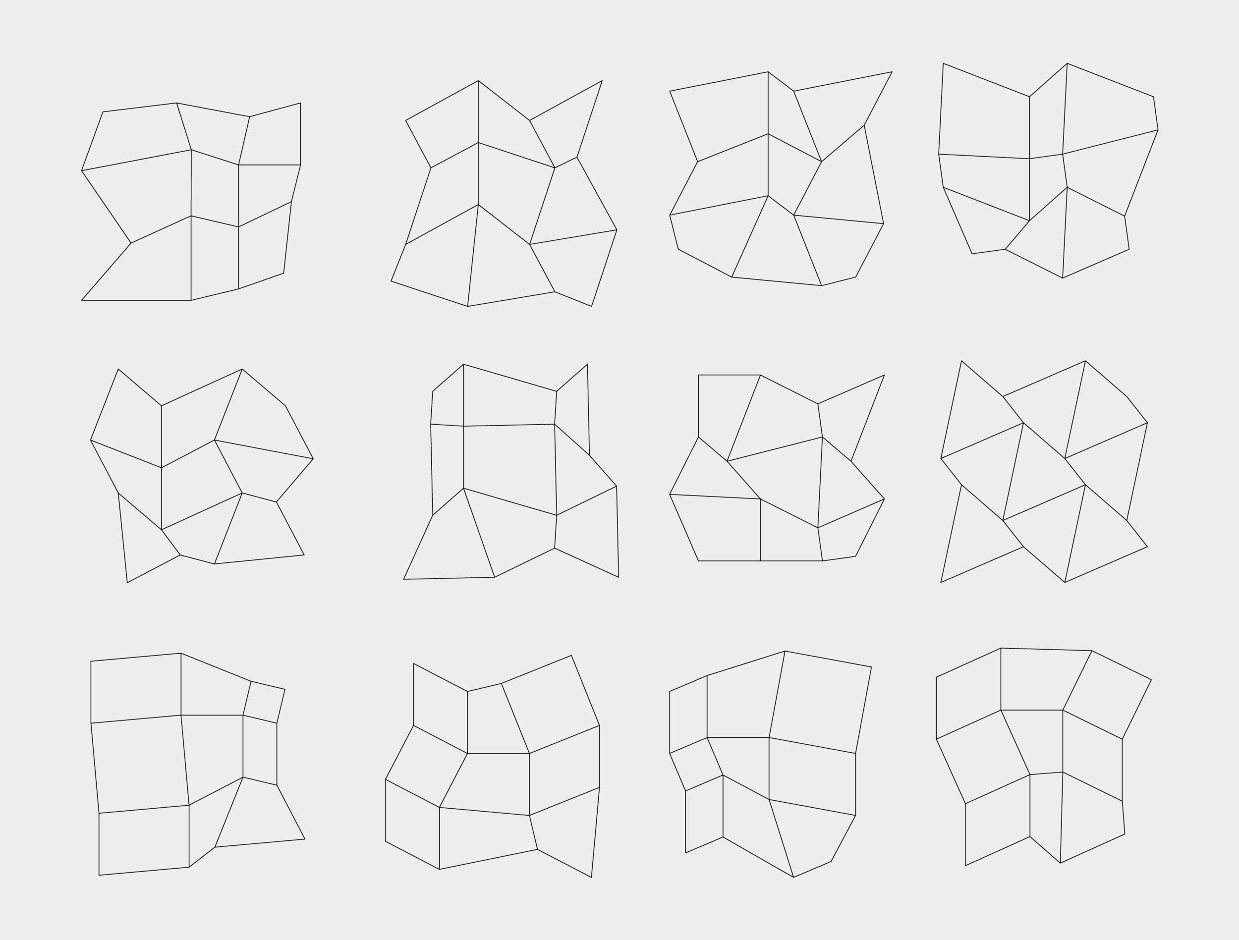 rlon_Grid_vectors_web.png