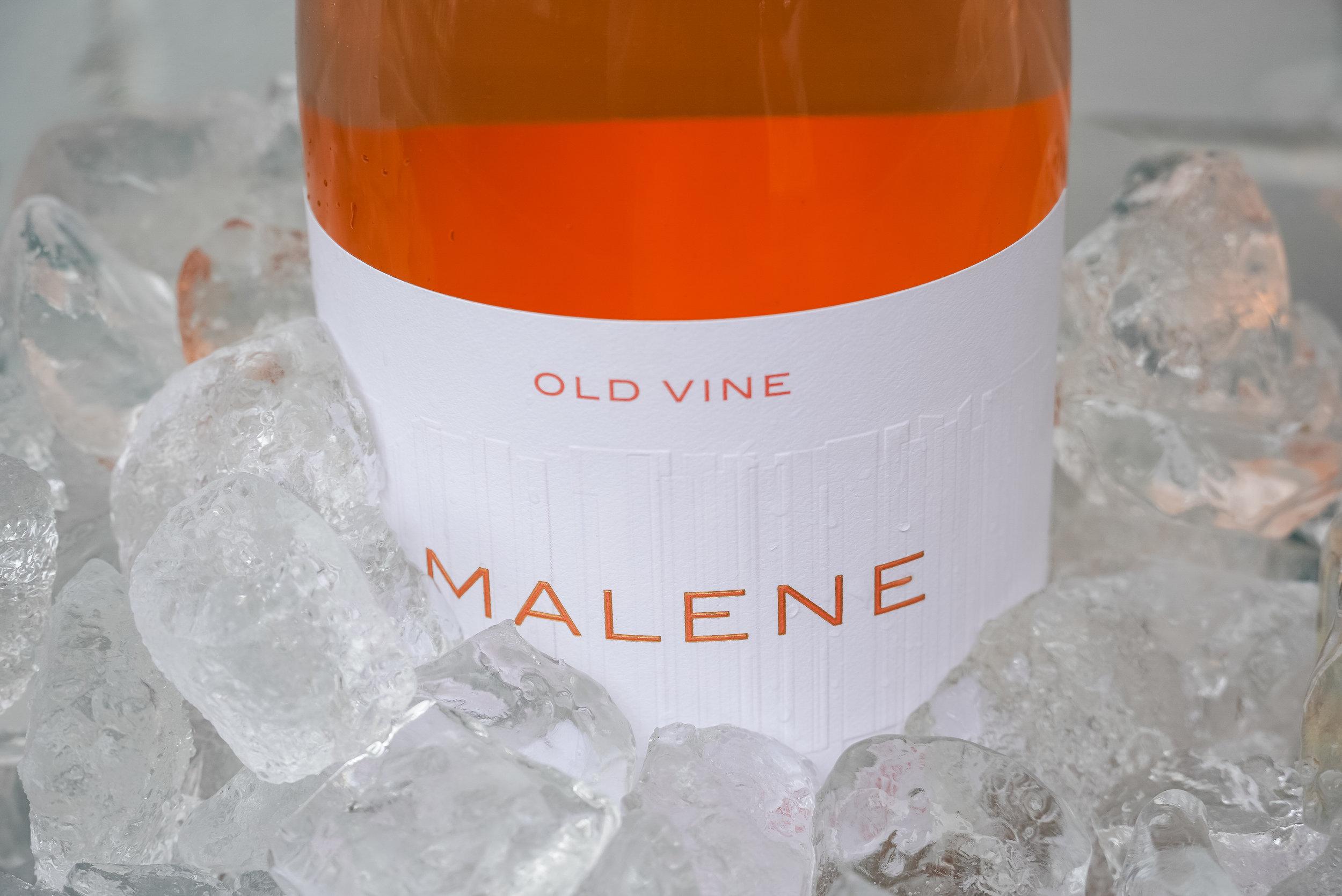 SDD-5.2019-Malene-15.jpg