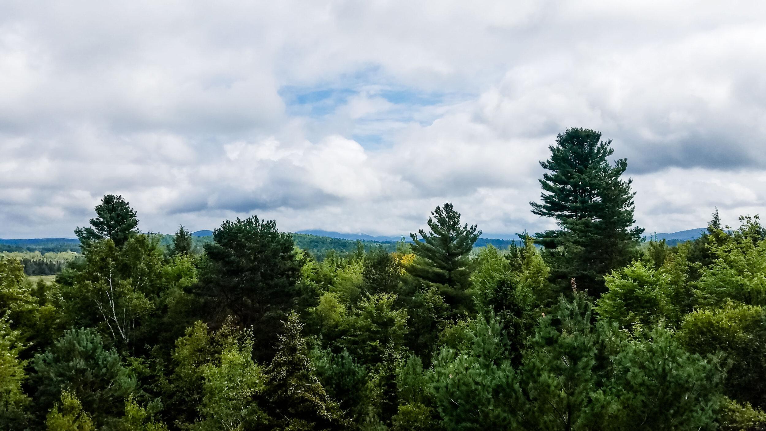 The Adirondacks via  The Wild Center