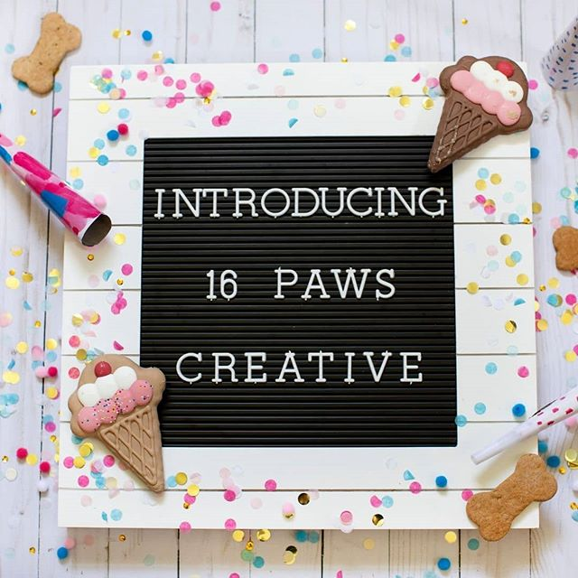 Jen & I couldn't be more excited to announce the official launch of 16 Paws Creative! For the better part of the last 5 years, Jen & Amanda have been business besties and built-in emotional support for one another on this crazy journey of entrepreneurship. . We've seen each other thru the ebbs and flows of being multi-passionate and creative business owners. Struggling to truly find our way solo in any one industry, a lightning bolt idea struck after a mini-meltdown on both their parts, we finally decided to collaborate efforts and a new business was born. . Imagine having a business that allows you to focus on many of your interests and use all of your skills on a regular basis, enter 16 Paws Creative. The two of us founded the company as a way to help small business creatives reach their full potential while relieving the burden of all the small things that get in the way of their passion. . Jen and Amanda are two down to earth babes who are wildly obsessed with their dogs (hence the name, 16 Paws) and are extremely passionate about supporting YOU on your entrepreneur journey. . 16 Paws Creative is a combination of a virtual assistant and creative services, focusing our attention on supporting small business owners in of need assistance with their social media, email management, general administrative work or collaborating with those who need help with their overall brand presence to include custom social media photography and graphics. . We invite you to visit our brand new website athttp://www.16pawscreative.comor message us directly for more information on how we can support your business so you can thrive during a 30-minute discovery call. . #virtualassistant #smallbusinessowner #vaforphotographers #behindthekeyboard #womeninbiz #instasmallbusiness #healthcoaches #beachbodycoach #coachingforcreatives