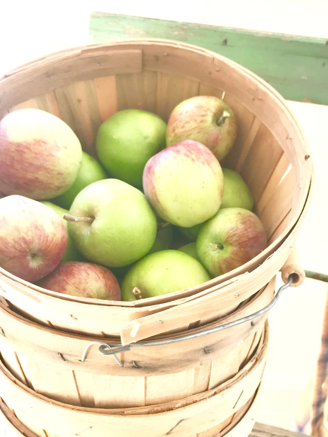 apple baskets.jpg