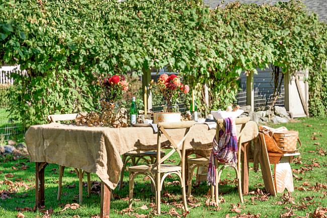 Autumn Alfresco Dining.jpg