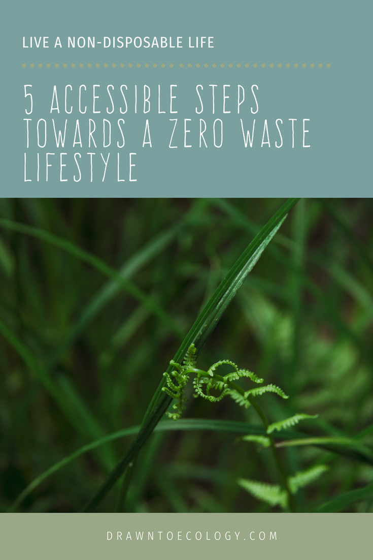5-Accessible-Steps-Towards-a-Zero-Waste-Lifestyle-Live-a-Non-Disposable-Life.png