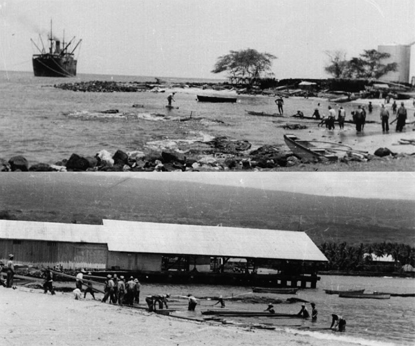 From the Collections of Kona Historical Society.