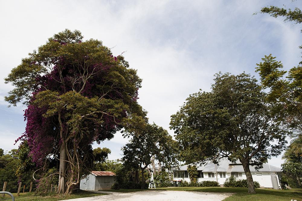 Byron Bay's Lighthouse Homestead