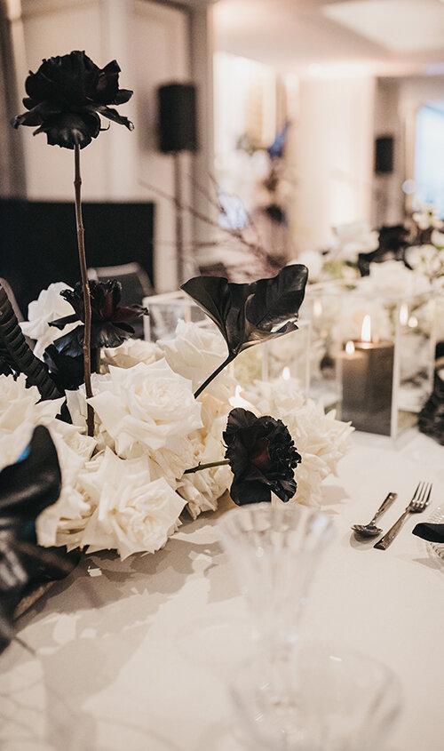 BLACK+WHITE+ROSES.jpg