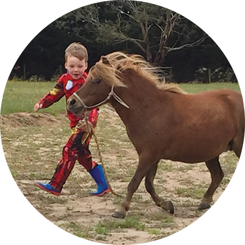 Cherry with a Superhero - Registered Miniature Horse – very cute and very cheeky